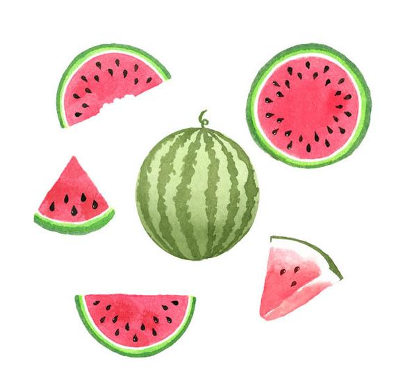 Watercolor set fruit food. Watermelon clipart tropical