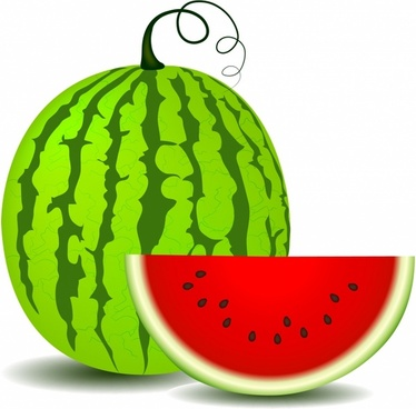 Watermelon clipart vector. Free download for