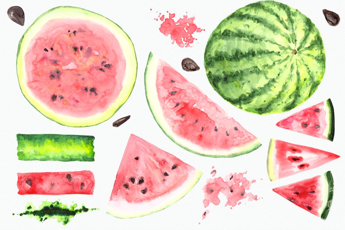 Watermelon clipart watercolor. Clip art set