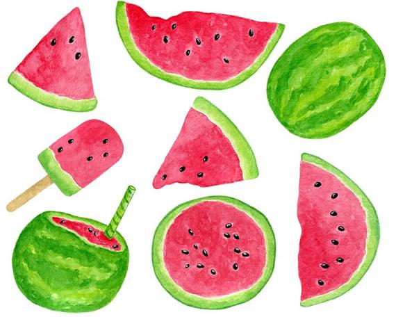 Fruit tropical summer ice. Watermelon clipart watercolor