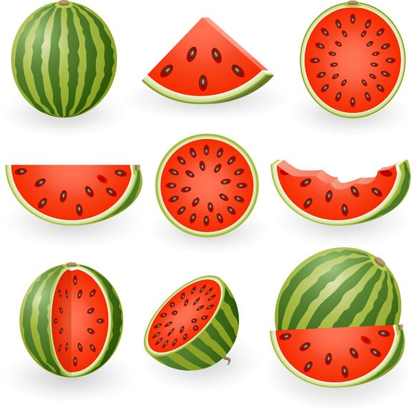 Watermelon clipart watermelon rind. Slices clip art this