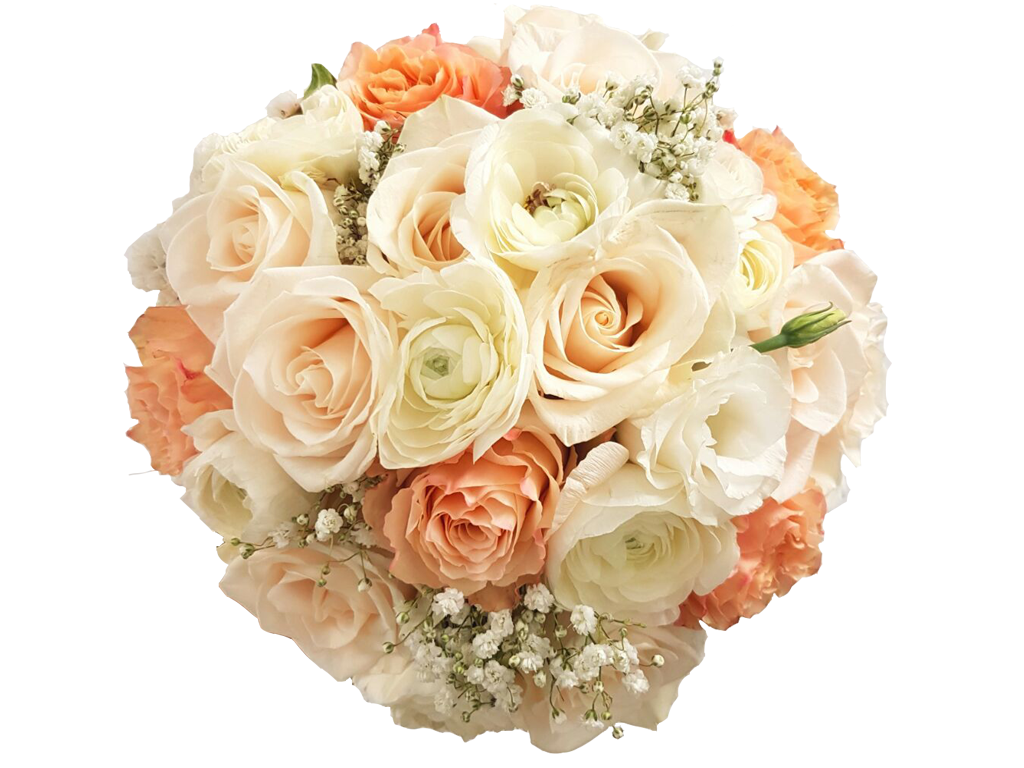 Rosita flowers weddings colombian. Wedding flower png