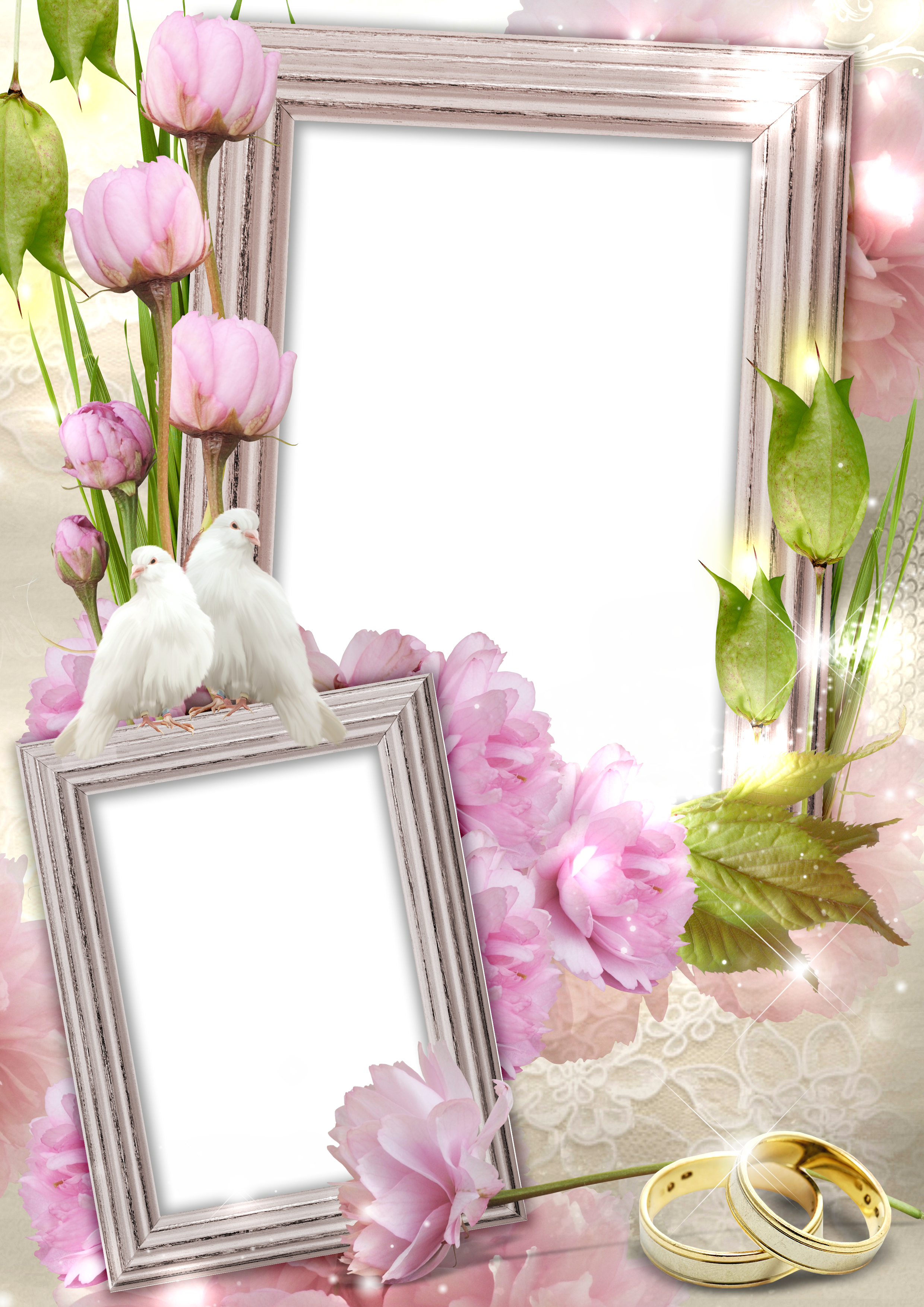 Wedding frame png. Transparent with rings and