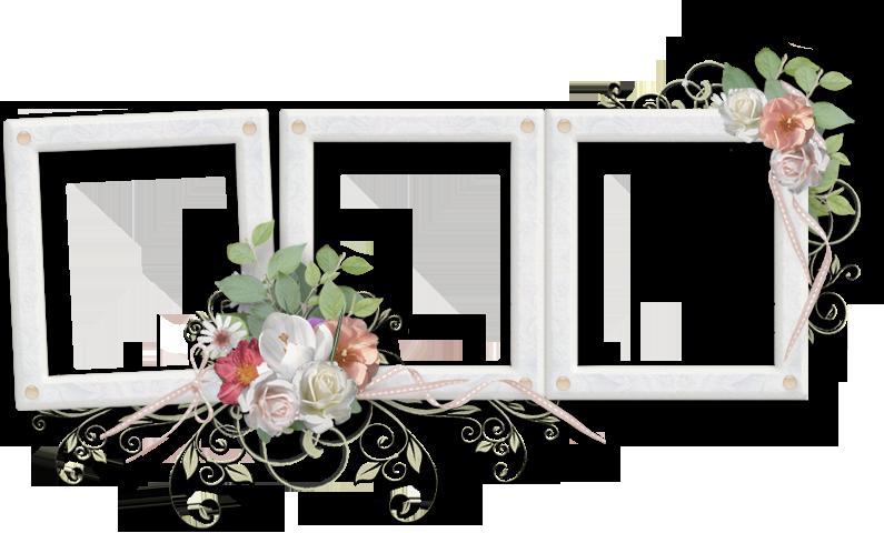 Wedding frame png.  frames free download