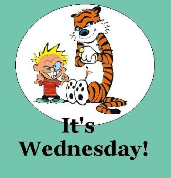Wednesday clipart s wednesday. Cliparts clip art library