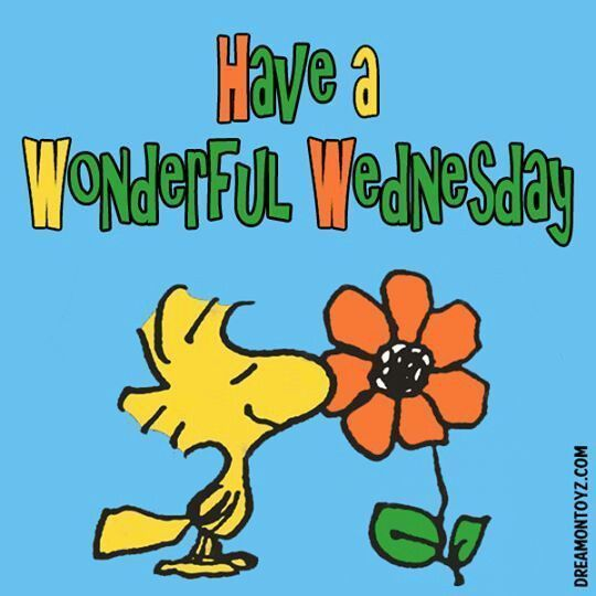 Image result for clip. Wednesday clipart wonderful wednesday