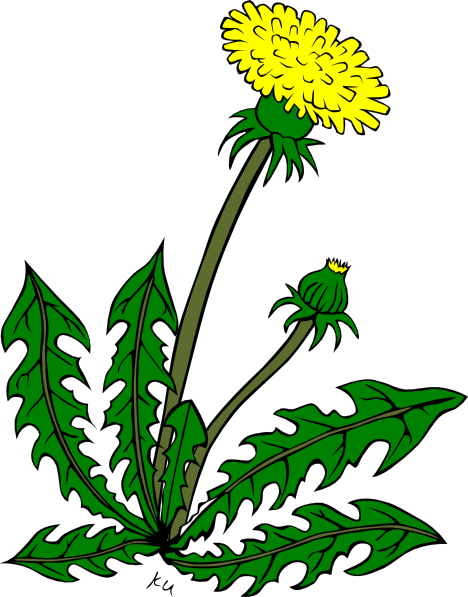 Weeds clipart. Free cliparts download clip