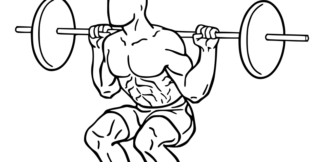 Weight clipart muscular force. The squat no brain