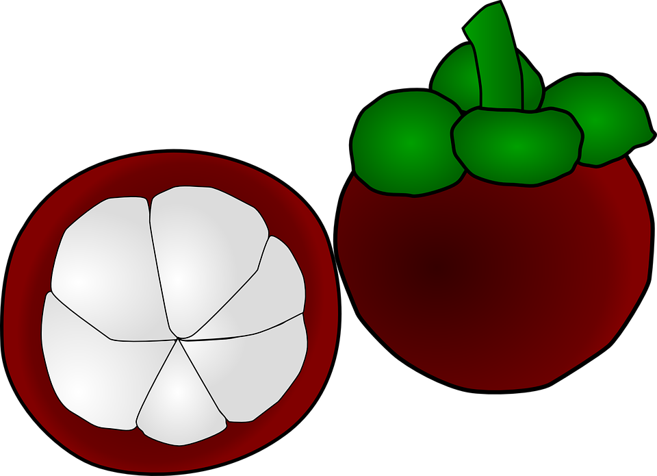 Way of taking garcinia. Weight clipart right