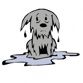 Wet clipart. Station