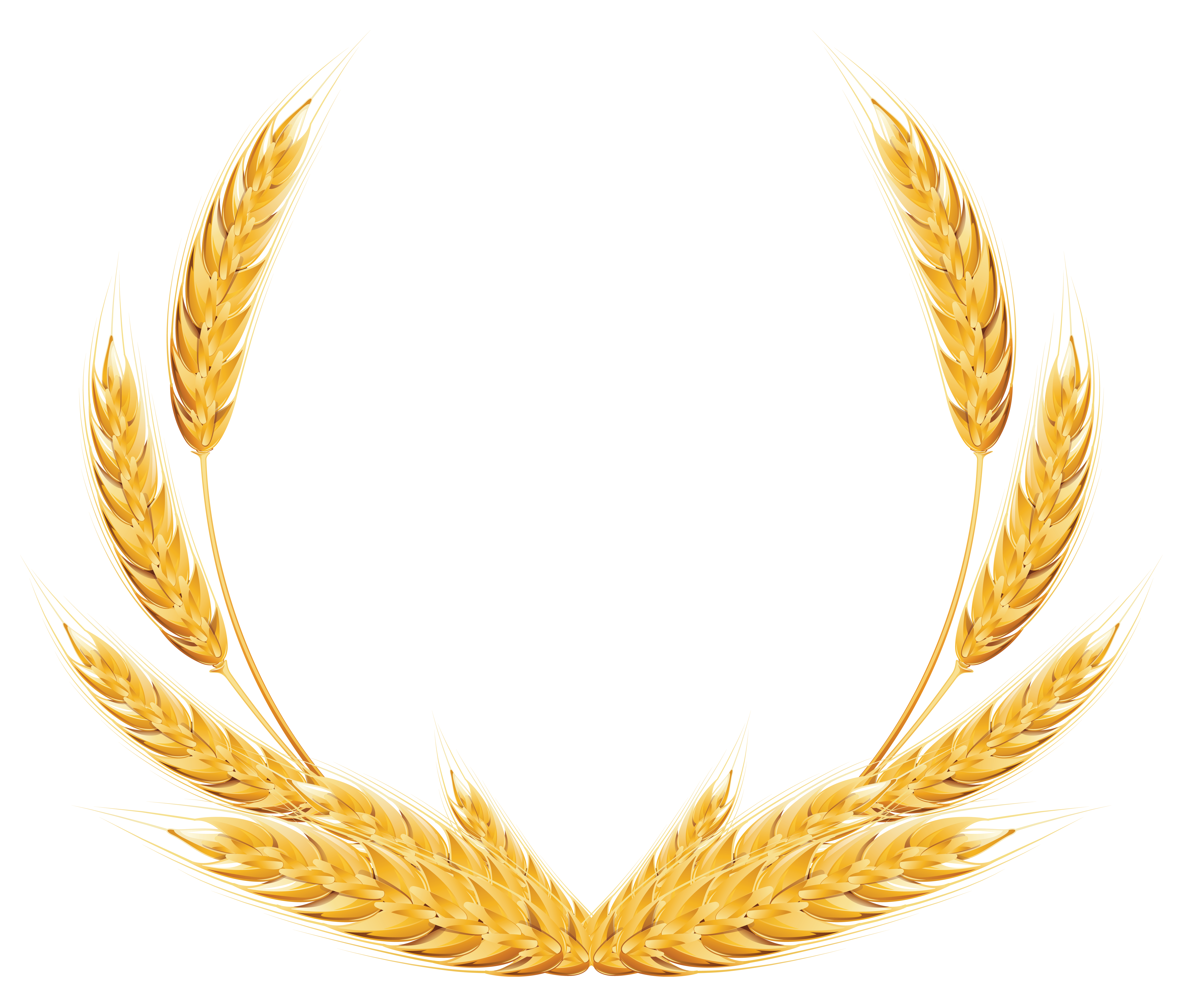 Wheat decoration png image. Clipart bread grain