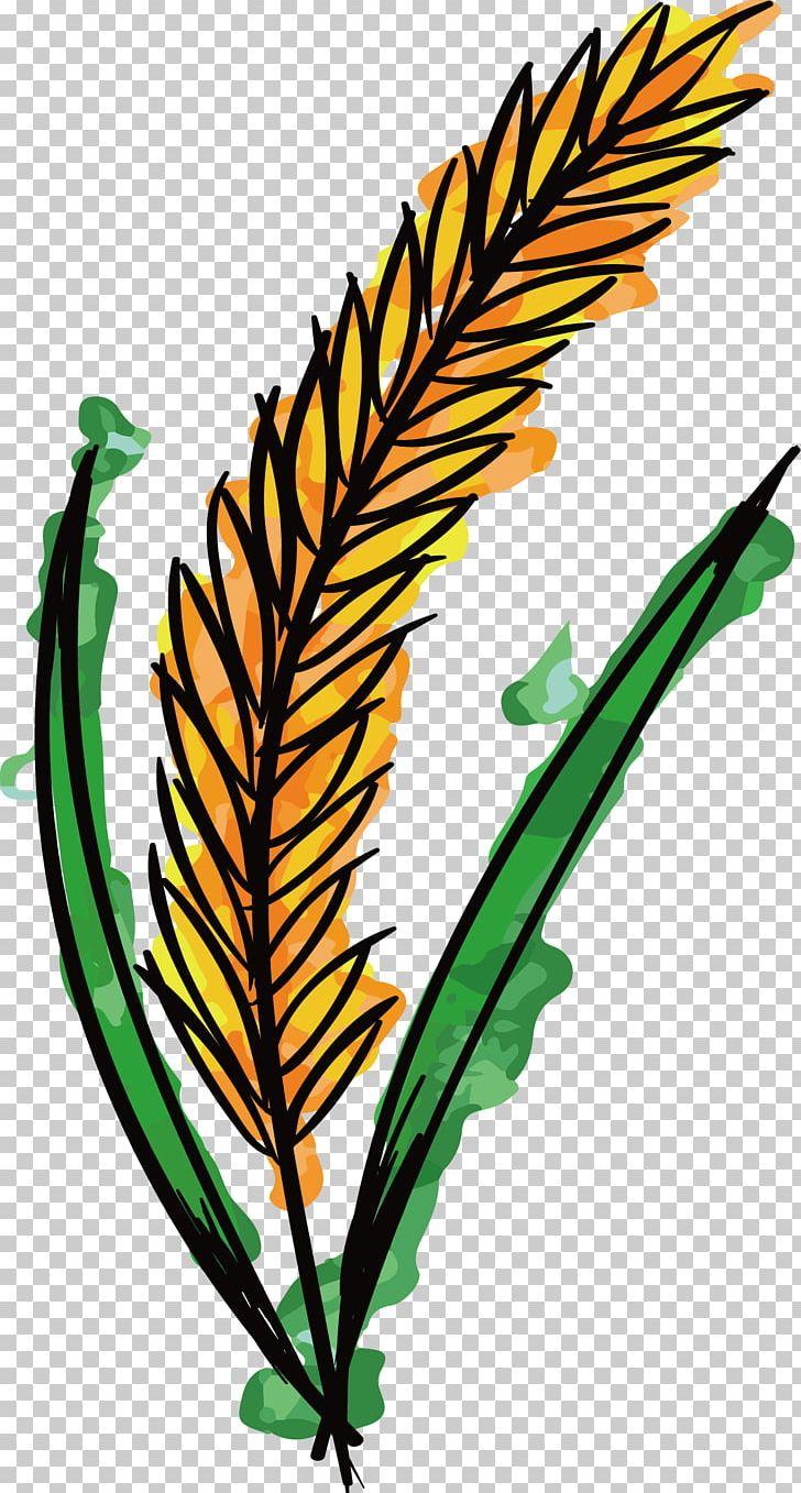 Wheat clipart branch. Watercolor painting png artwork