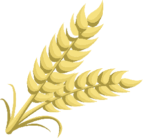Wheat clipart divider. Dividers free clip art