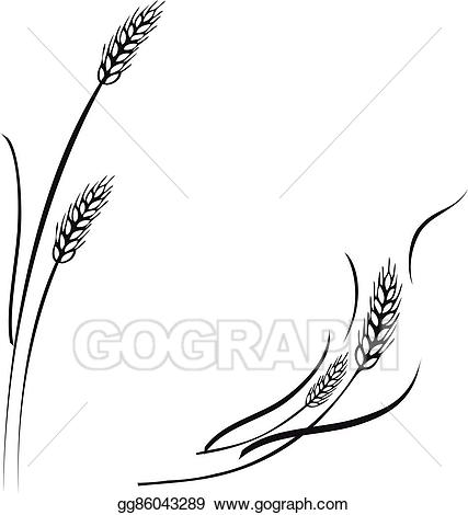 Vector ears frame border. Wheat clipart divider
