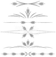 Wheat clipart divider. Page dividers stock vectors