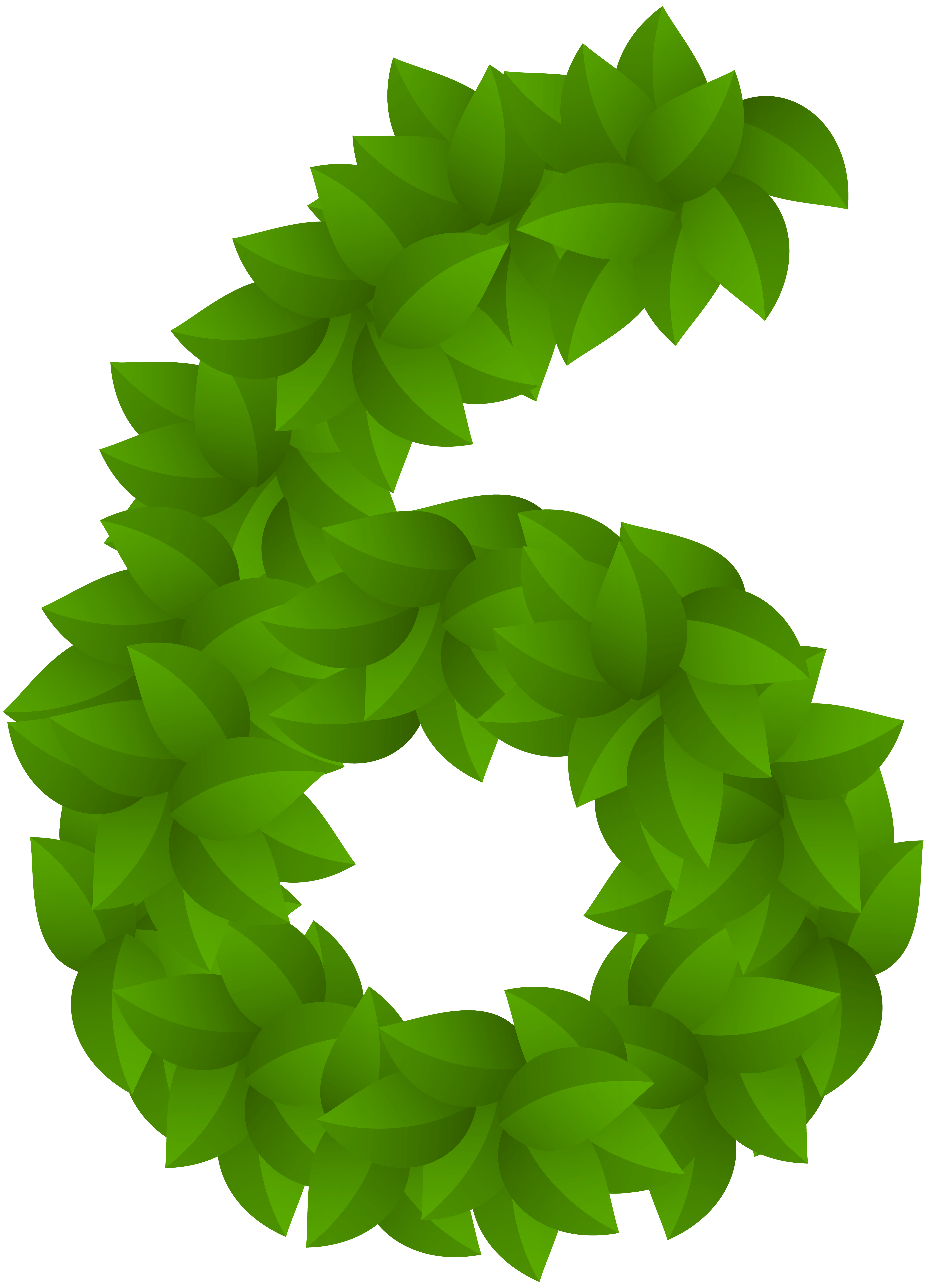 Leaf number six png. Wheat clipart green