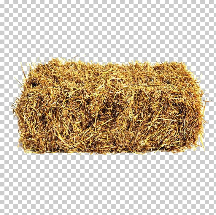 Straw bale sheep png. Wheat clipart hay
