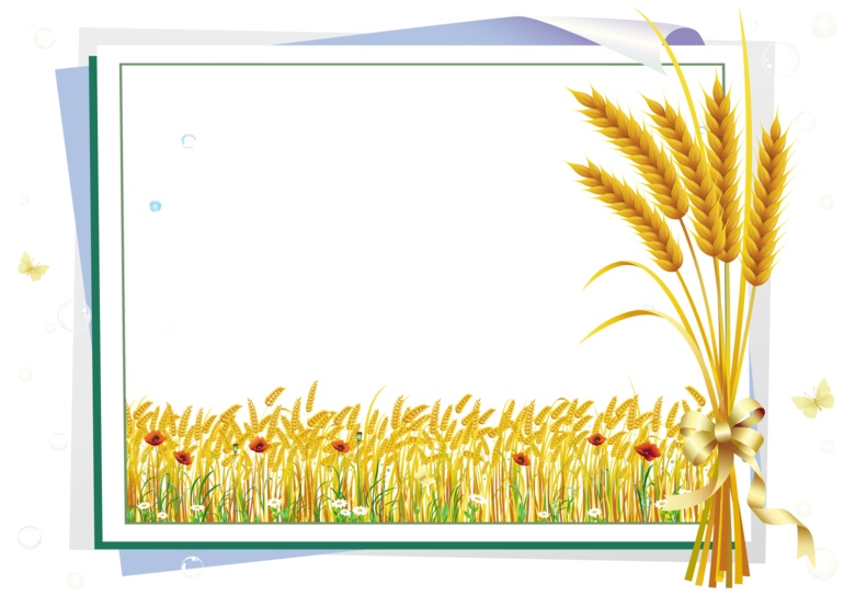 Forgetmenot vegetables frames. Wheat clipart hay