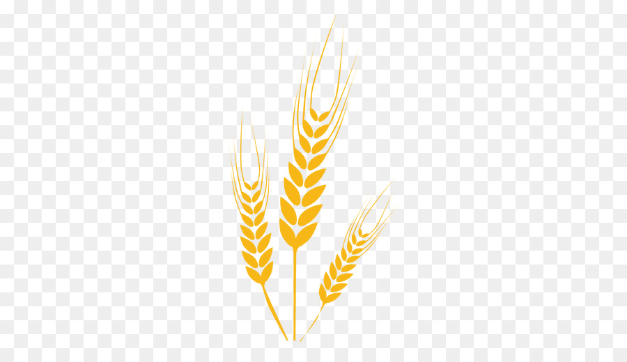Feather transparent clip art. Wheat clipart icon