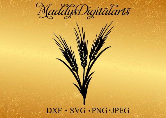 Wheat clipart jpeg. Stem svg png dxf