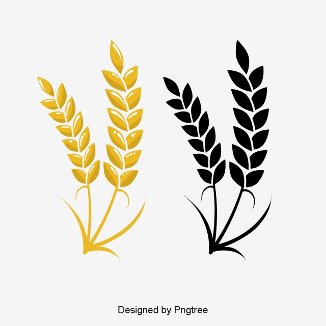 Colored colorless png transparent. Wheat clipart logo
