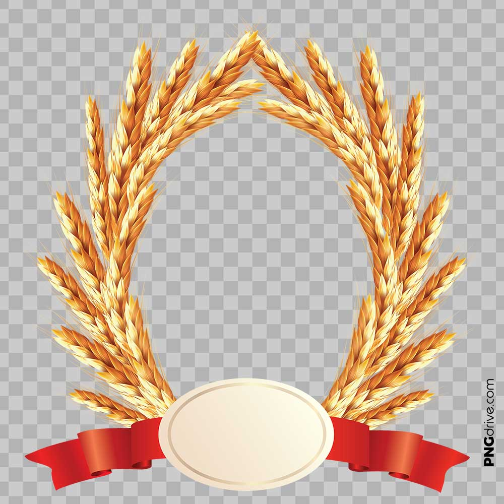 Frame with red ribbon. Wheat clipart millet plant