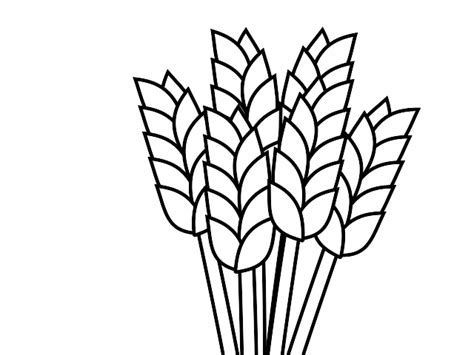 Image result for black. Wheat clipart outline