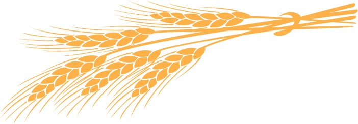 Wheat clipart piece wheat.  clipartlook