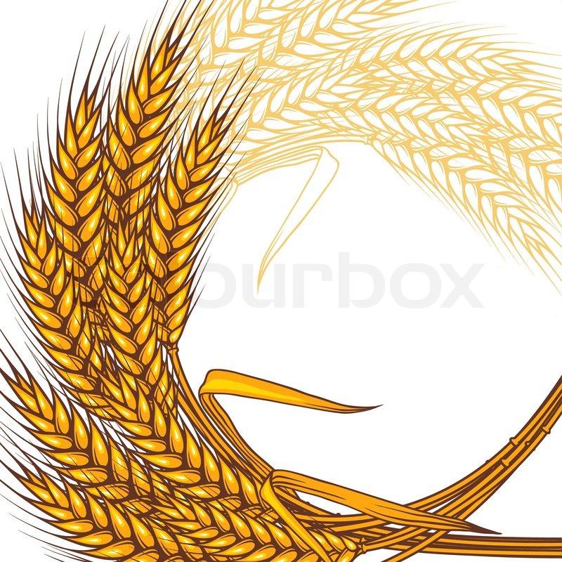 Wheat clipart ring. X free clip art
