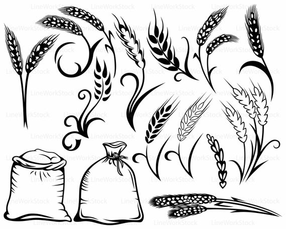Svg silhouette cricut cut. Wheat clipart rye