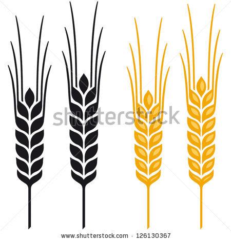 Wheat clipart rye. Ears of barley or
