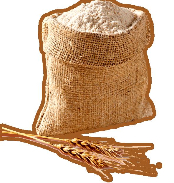 Wheat clipart sack flour. Sanghvi foods these days