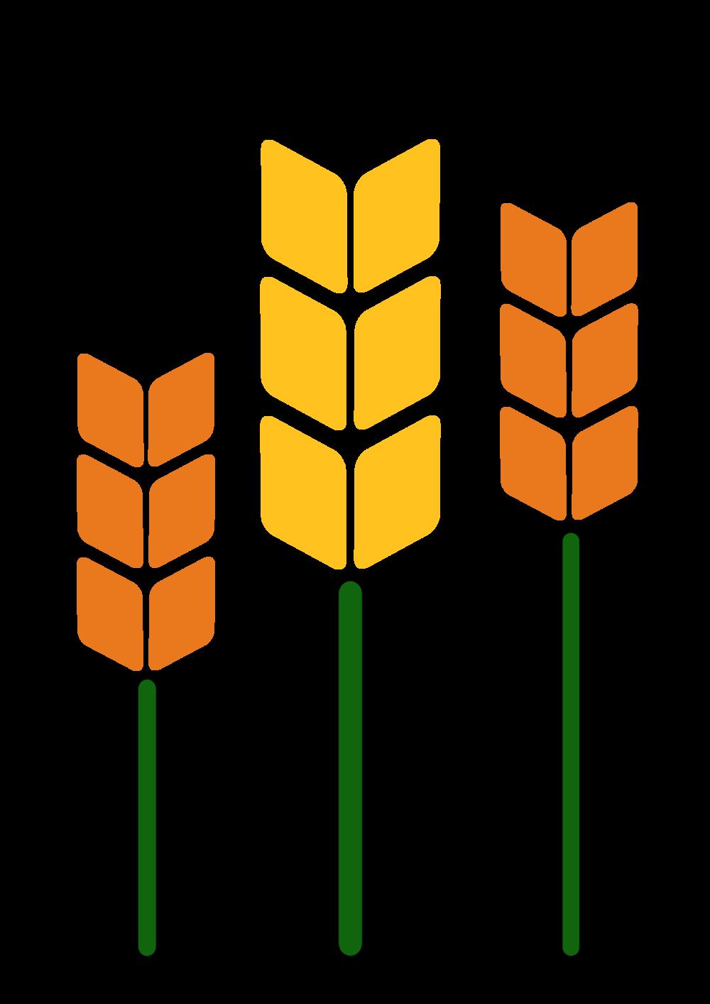 Wheat clipart sheaf wheat. Wall sheaves a tutorial