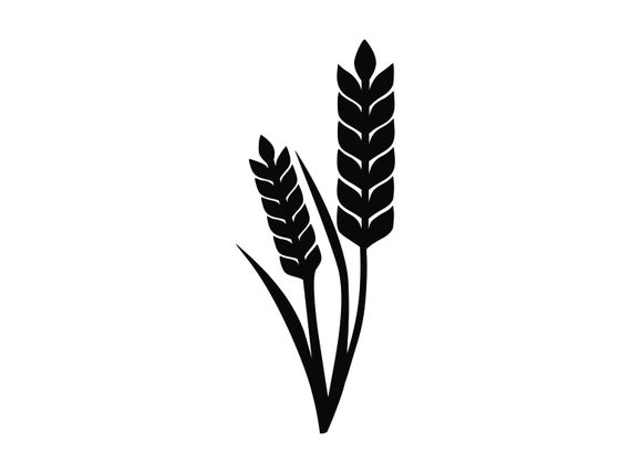 Stem svg floral cutting. Wheat clipart silhouette