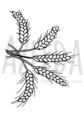 Amazon com azeeda a. Wheat clipart sprig