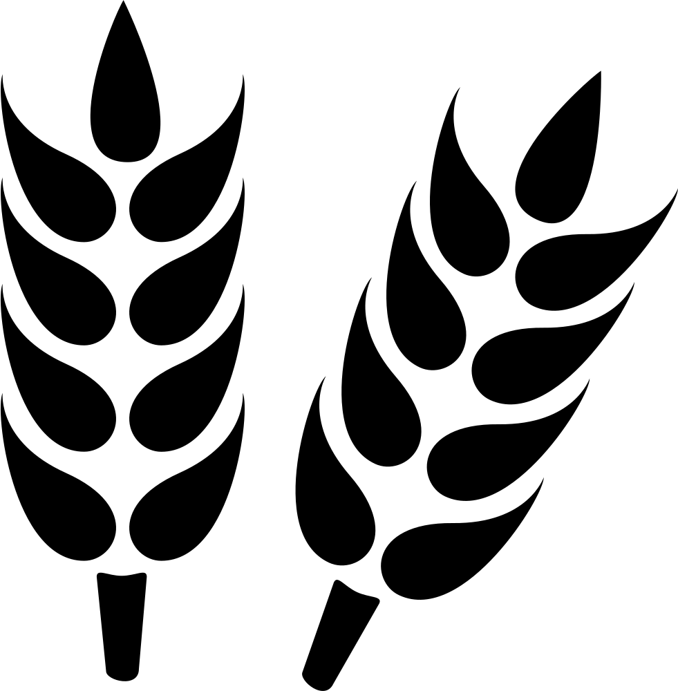 Png icon free download. Wheat clipart svg