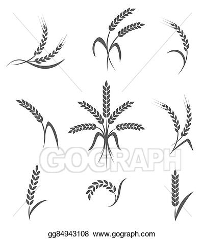 Vector illustration ears or. Wheat clipart symbolism