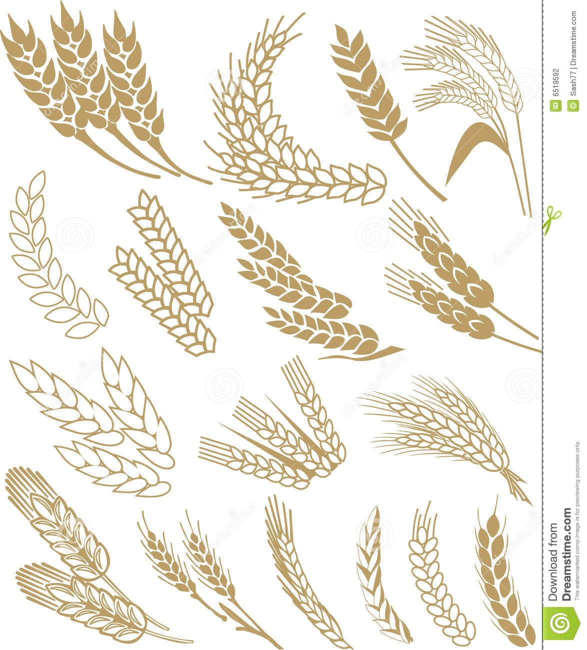Pin on inbetweening . Wheat clipart vector