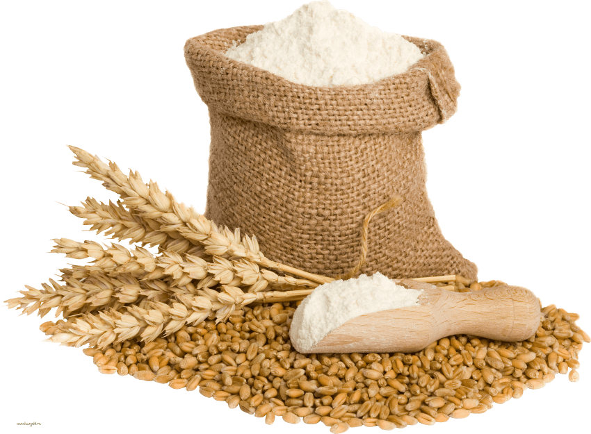 Wheat clipart wheat corn. Png free images toppng