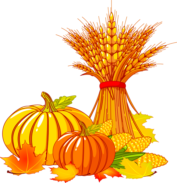 Thanksgiving what does it. Wheat clipart wheat corn