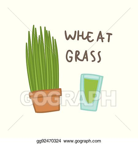 Wheat clipart wheat grass. Clip art vector superfood