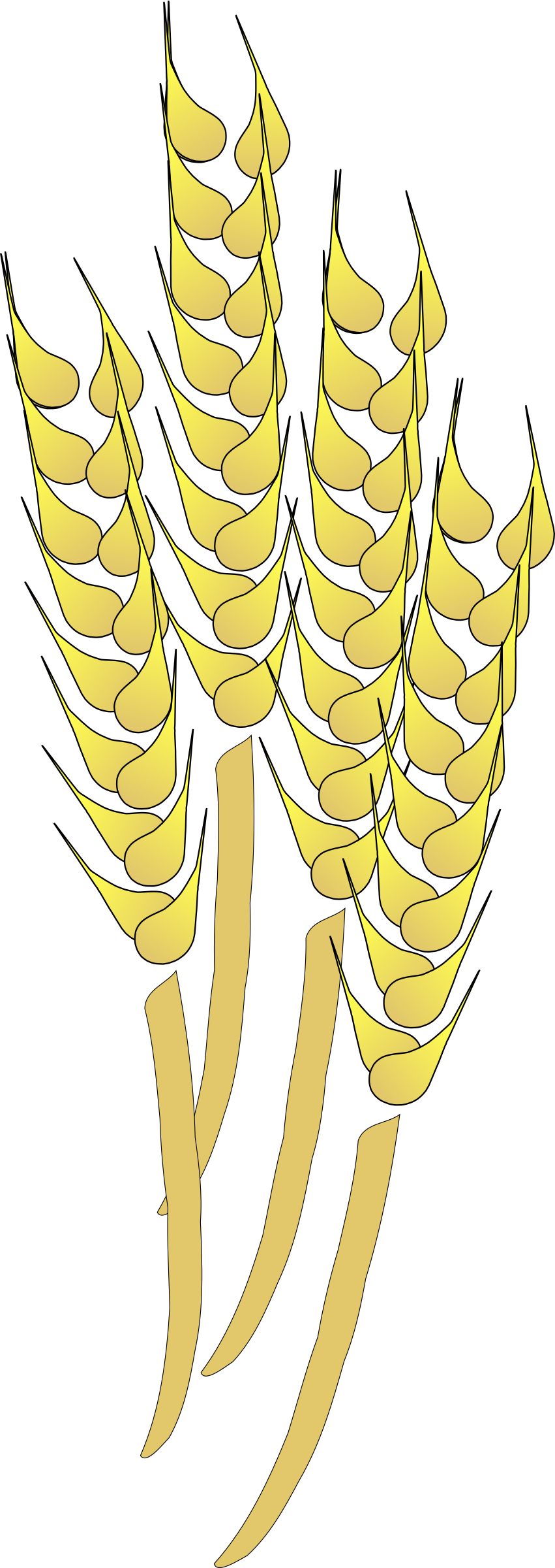Big image png. Wheat clipart wheat harvest