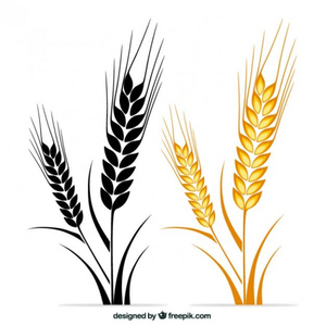 Wheat clipart wheat stem. Free of stalks images
