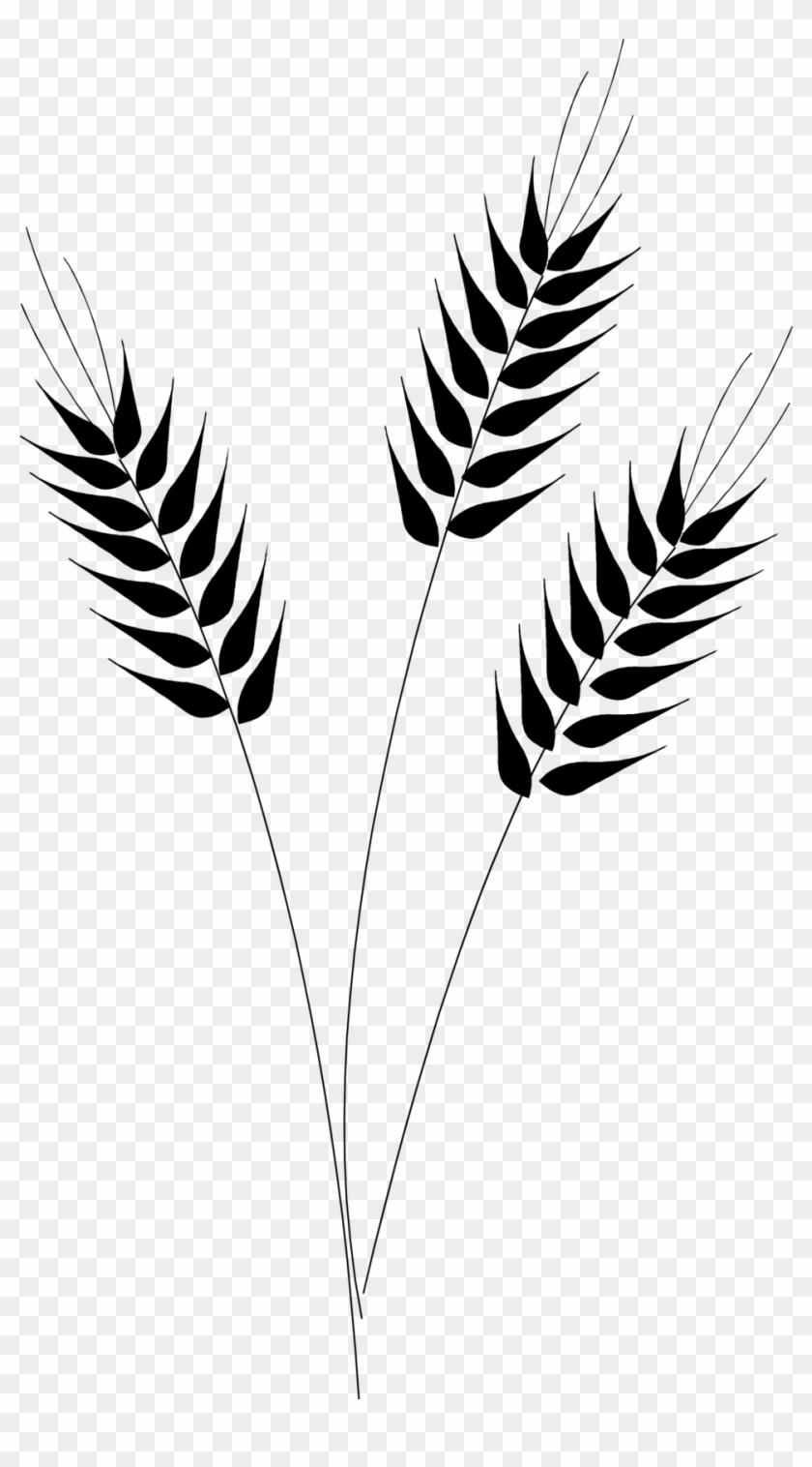 Wheat clipart wheat stock. Leaf x free clip
