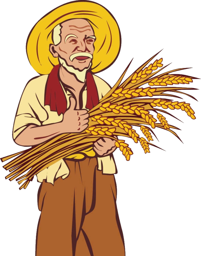 Wheat clipart wheat straw. Farmer agriculture clip art