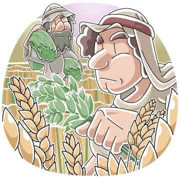 Christian cliparts net parable. Wheat clipart wheat tares