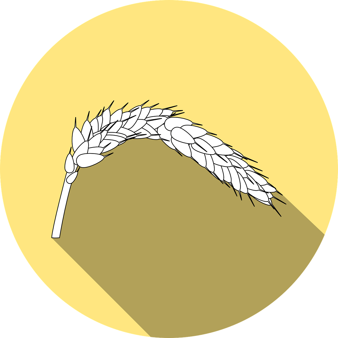 Rounding up the with. Wheat clipart wheat tares