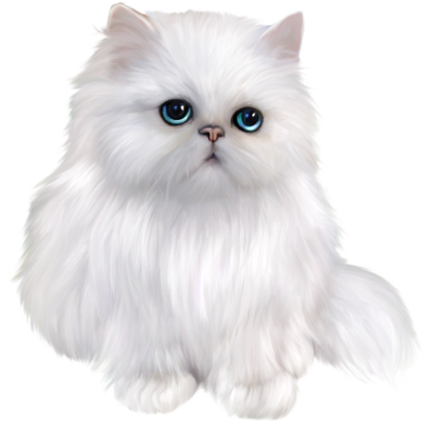 White cat a d. Wheel clipart persian