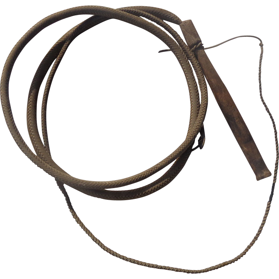 Whip clipart horse whip. Png image purepng free