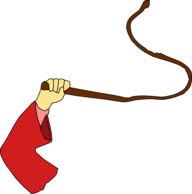 Eu parliamentarians push to. Whip clipart punishment